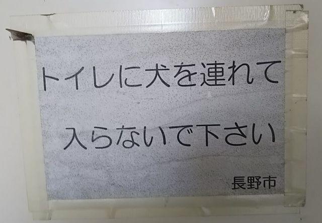 13_トイレに犬を.jpg