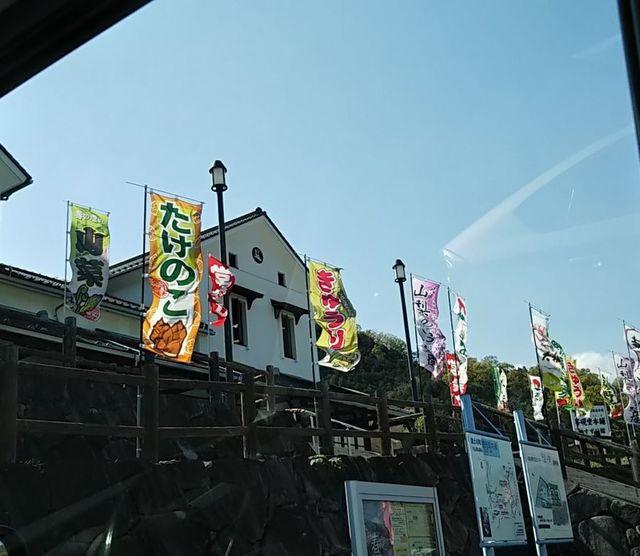 1日目_たけのこ.jpg