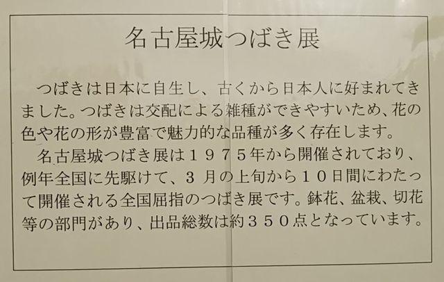 名古屋つばき展.jpg